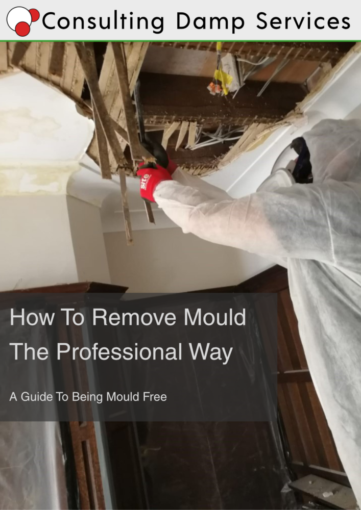 Mould download_PDF_Cover
